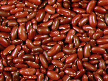 Dark Red Kidney Bean