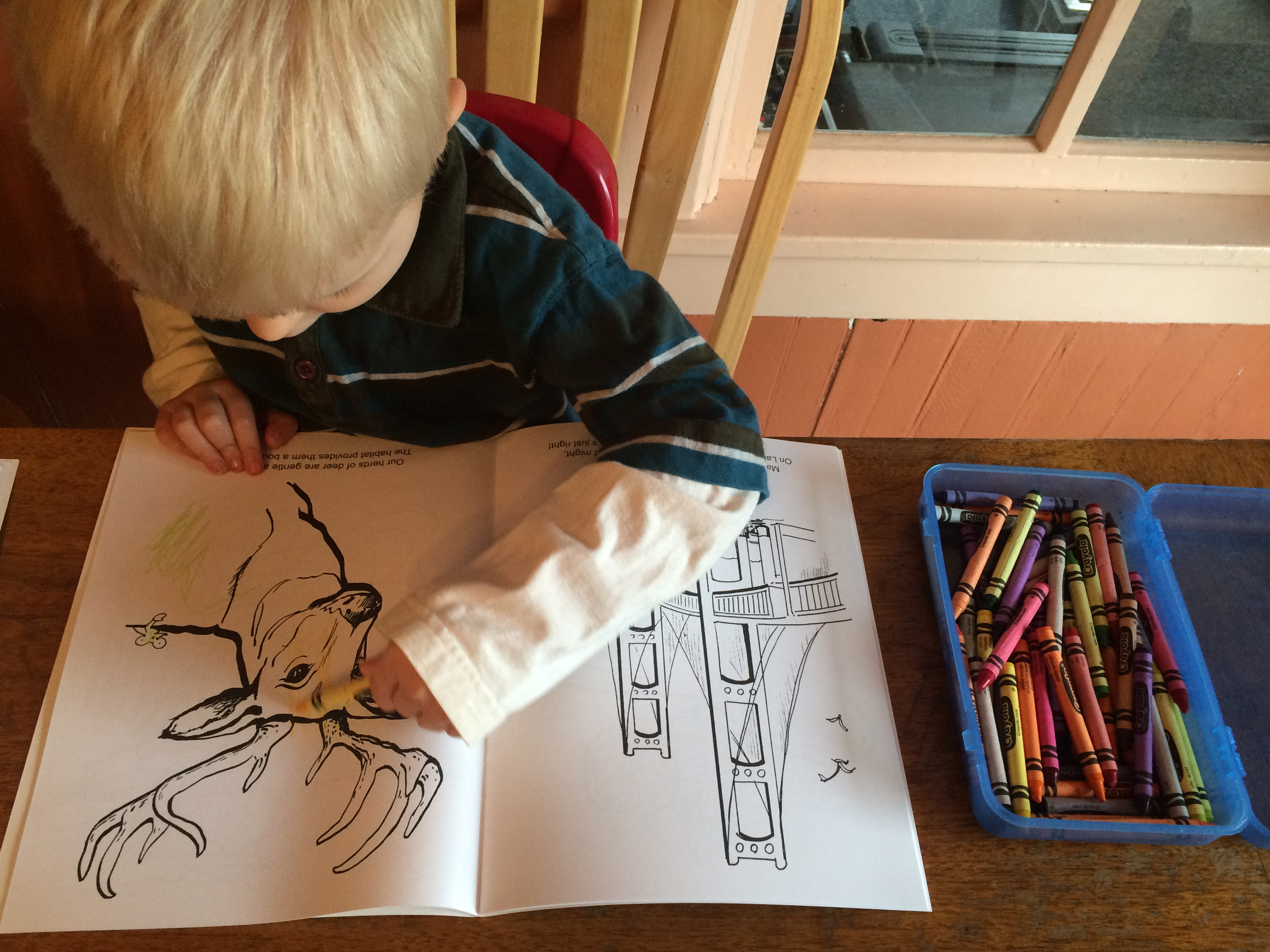 Michigan Coloring Books are Fun for Children of All Ages | Embracing ...